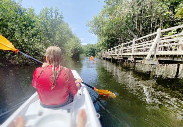 Enfant kayak mangrove pagaies